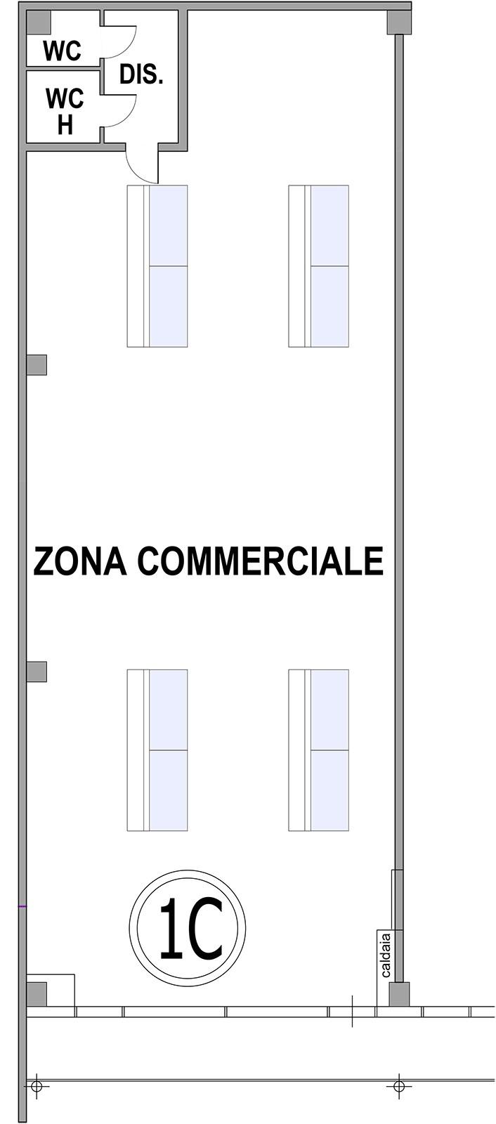 Planimetria Locali 1C